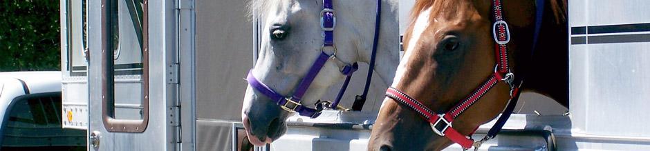 Beitragsrechner Pferdeanhänger